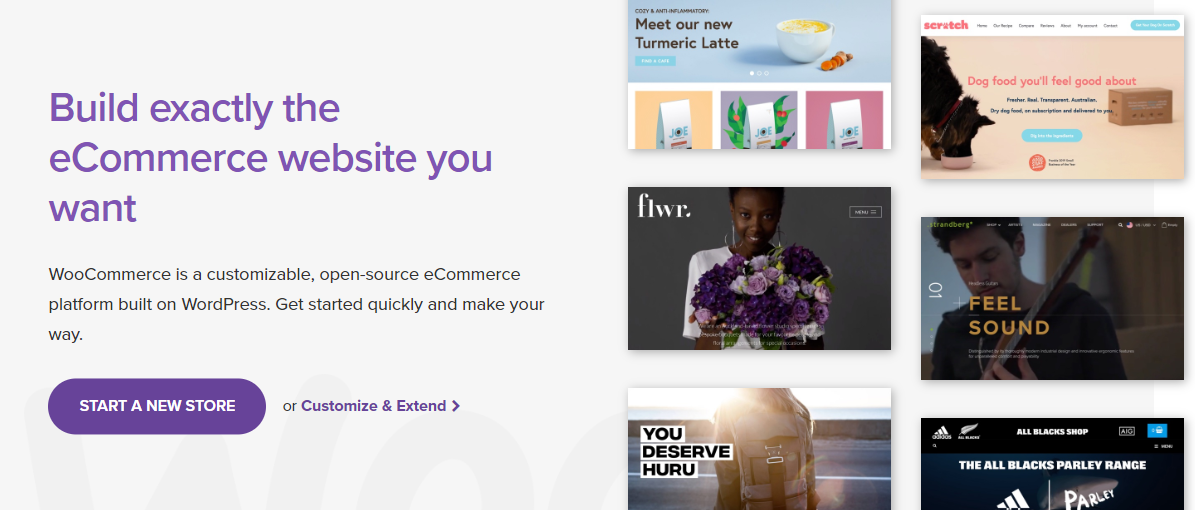 screenshot woocommerce.com 2020.08.10 17 58 42